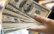 سونامی عوارض دلار تکنرخی در راه است: جایی برای شرکتهای ICT نیست