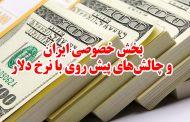 بخش خصوصی ایران و چالشهای پیش روی با نرخ دلار