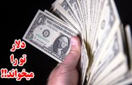 دلار تو را میخواند!!